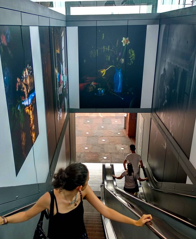 escaleras MAS  - 41820099510 d6ed08d58c c - Burez y barroco en el MAS