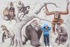 Wildest monkey of all