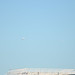 Two JAL Planes near Haneda Airport 4
