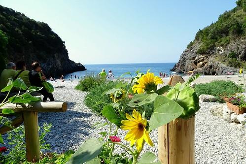 Pozzalo beach Marina di Camerota