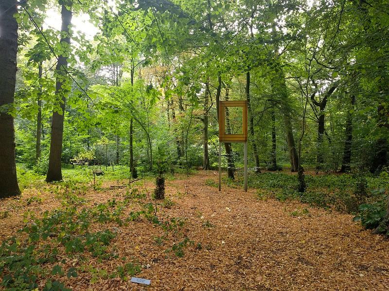 """Middelheim  - 43723877411 191ef36668 c - """"Experience traps"""" en el parque-museo de Amberes."""