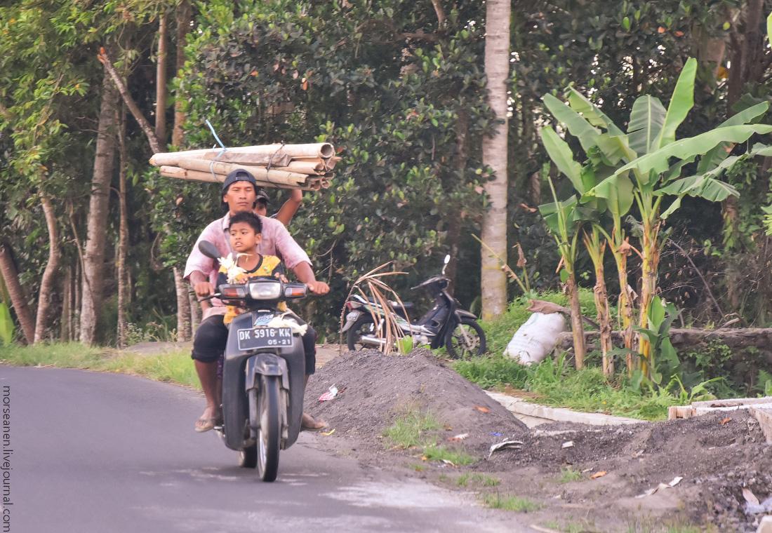 Bali-Ubud-(32)