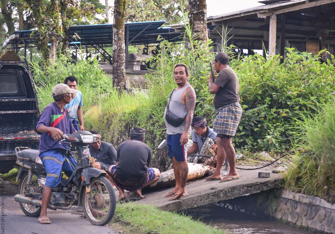Bali-Ubud-(23)