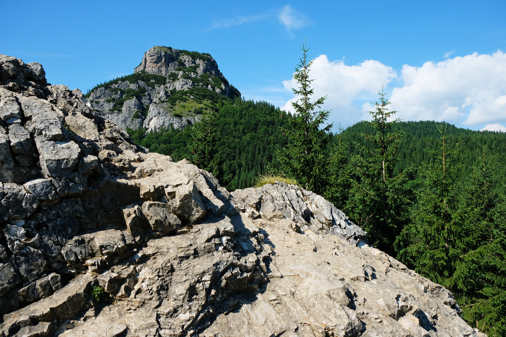 Best Day Hikes Little Fatra: Malý Rozsutec, Little Fatra, Slovakia