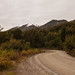 Camino del Cerro Bayo