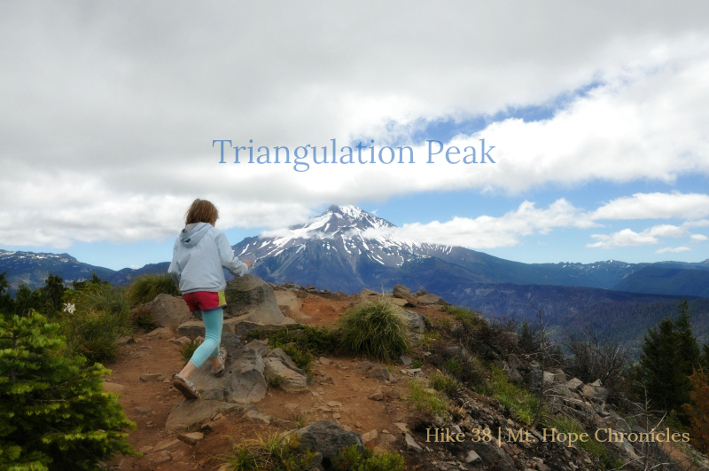 Triangulation Peak @ Mt. Hope Chronicles