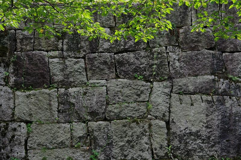 石垣と緑_201807