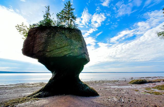 Hopewell Rocks 3 (explored), Nikon D810, AF Nikkor ED 14mm f/2.8D