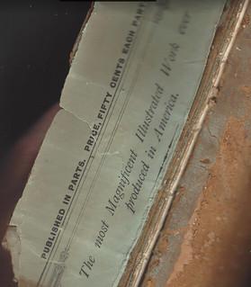 Treasury Vignette book spine fragment