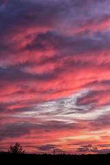 Ciel du matin à Auxerre. 30/07 - Photo of Gy-l'Évêque