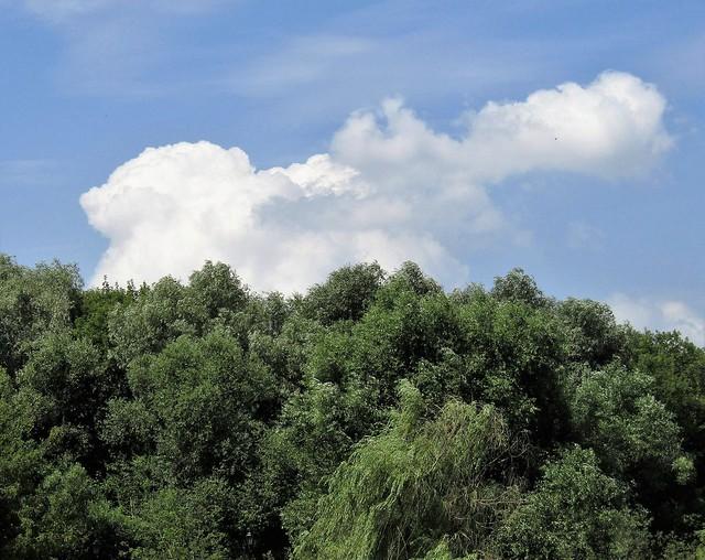 2018-07-25 облака в Свиблово (4)