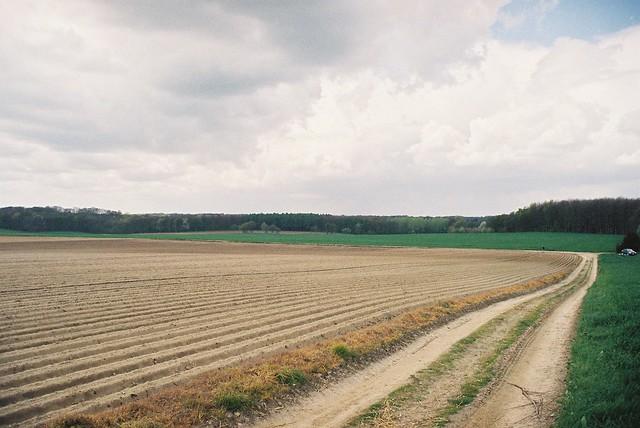 Programme paysage