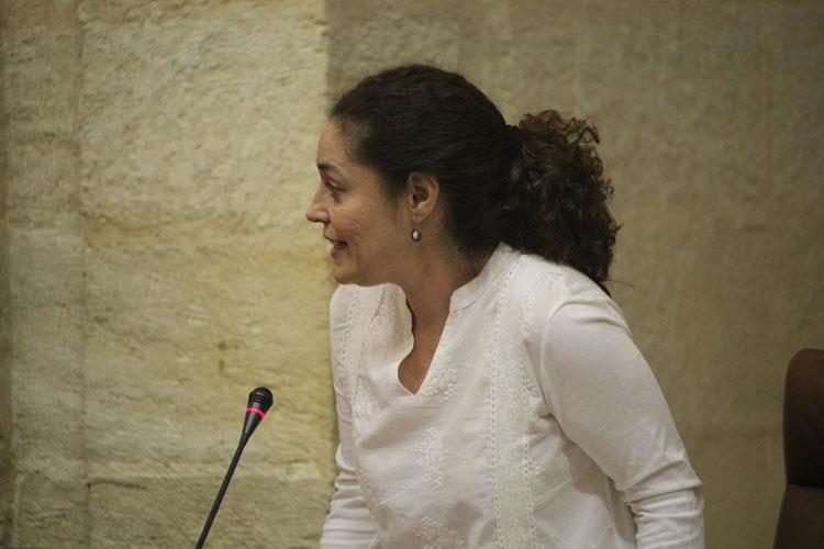 Nieto, durante su intervención en el Pleno de hoy.1