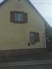 IMG_1096.JPG - Photo of Sessenheim