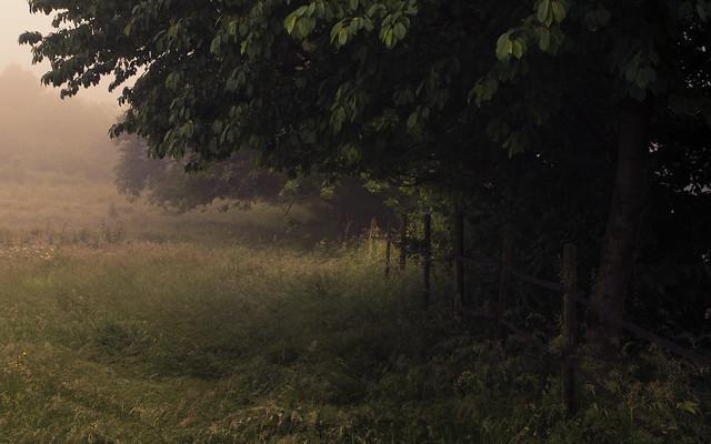 A breeze of quiet melancholy