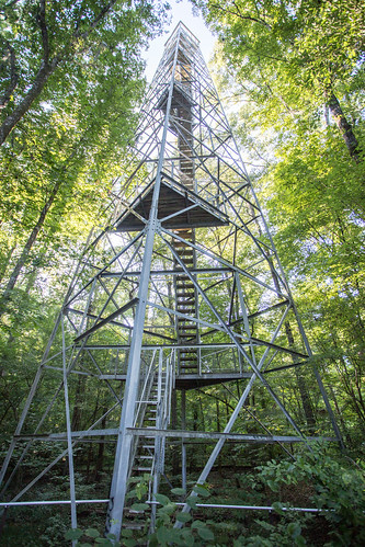 100ft birding tower. That we're about to climb