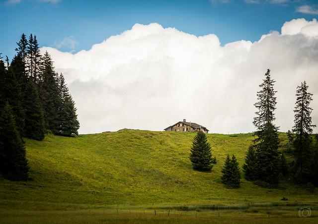 ©CesareMarchitto-5592, Nikon D800, AF-S VR Zoom-Nikkor 24-85mm f/3.5-4.5G IF-ED