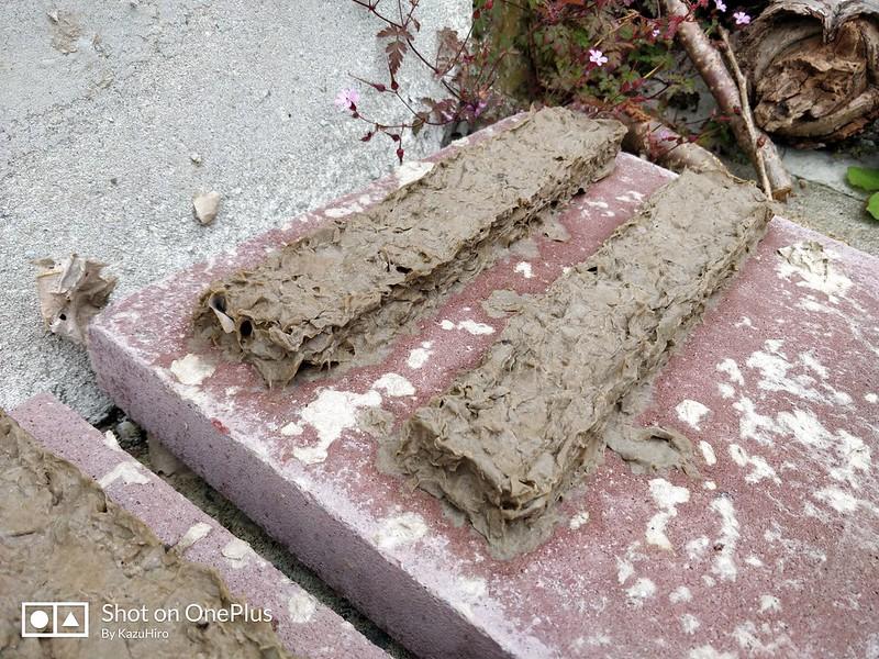 手作りダンボールブロック (5)