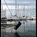 harbor reflection by ukke2011