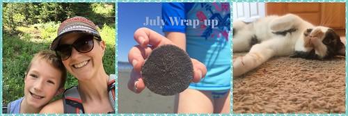 July_wrap_up_2018
