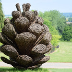 The Sir Harold Hillier Gardens - Hampshire
