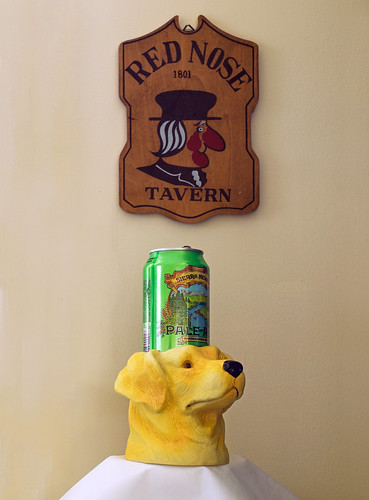 Dog koozie