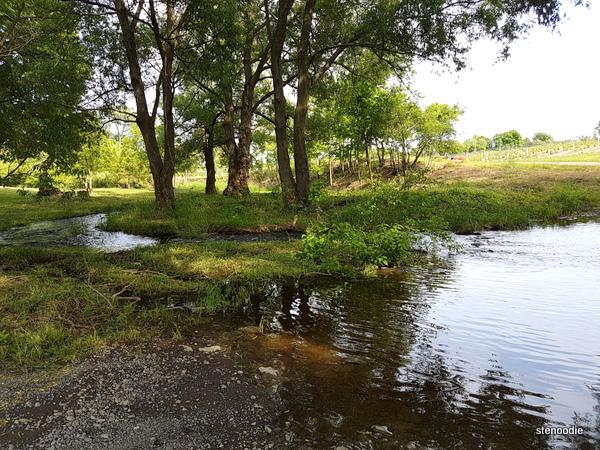 Hillier Creek