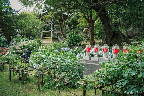 Zenkoh-ji