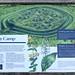 023-20180221_Gordano District-Somerset-Cadbury Camp Iron Age Hill Fort-information board