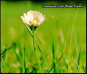 cremation cost wake forest