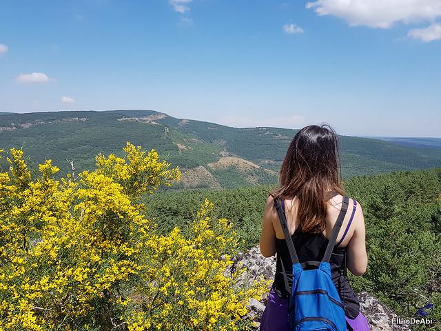 Valle de Juarros y Sierra de la Demanda en 4x4 (9)