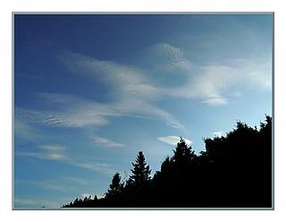 N14429-S - The fingerprints of God or of the Devil