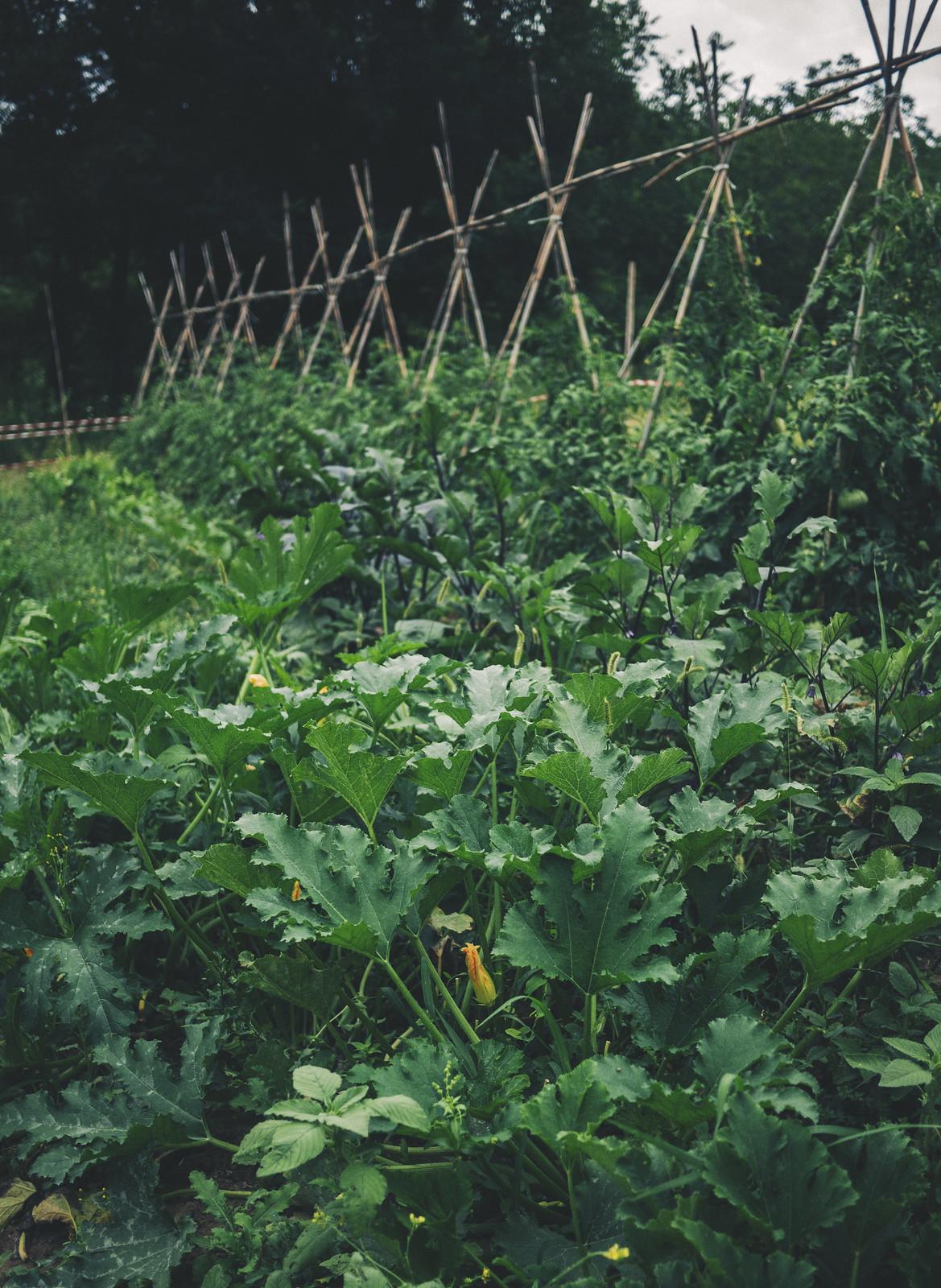 Agriturismo Ramusè