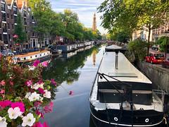 Morning Splendor in Amsterdam