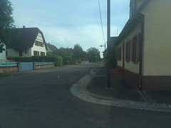 IMG_1094.JPG - Photo of Sessenheim