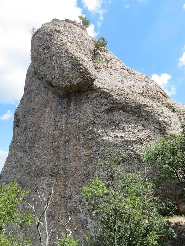 Montserrat: agulla dels Naps de DaltIMG_2620