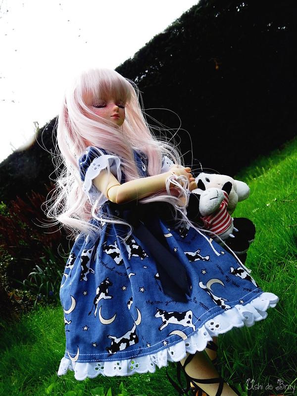 [Volks MSD Myu Sweet Dream] Ombéline p.4 + vidéo bas de page - Page 4 41582564241_5dc5c15623_c