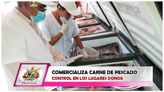 control-en-los-lugares-donde-se-comercializa-carne-de-pescado