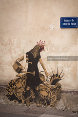Chalon Sur saone - Street Art