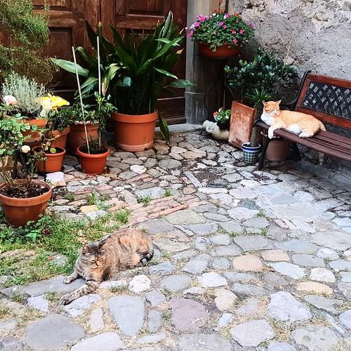 Toscana: incontri ad Anghiari