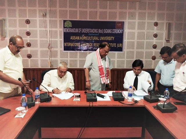 Signing MoU between Assam Agricultural University (AAU) and International Livestock Research Institute (ILRI), 30 August 2018