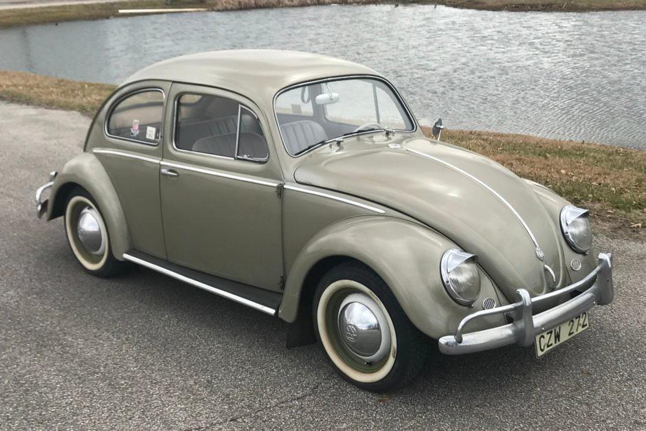 beetle - UlukmanM - Flickr