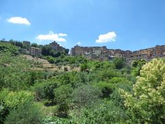 Orto dei Pecci - park in Siena