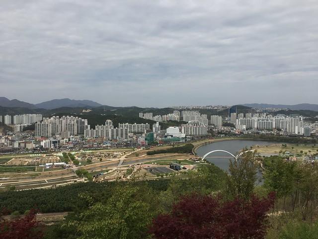 16정상에서 바라본 태화강 정원박람회