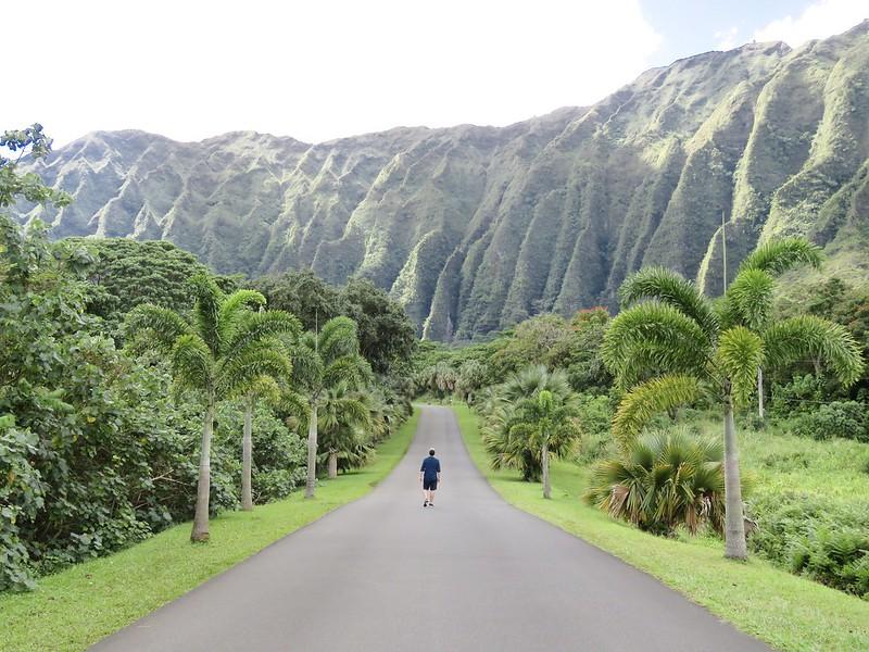 Hawaii Jardin botánico Hoomaluhia 3