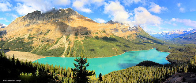 Caldron Peak & Peyto Lake from Bow Summit Lookout, Banff National Park, Alberta, Canada