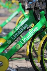 LImeBike Launch-12