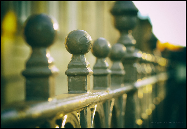 Fence bokeh (Explored)