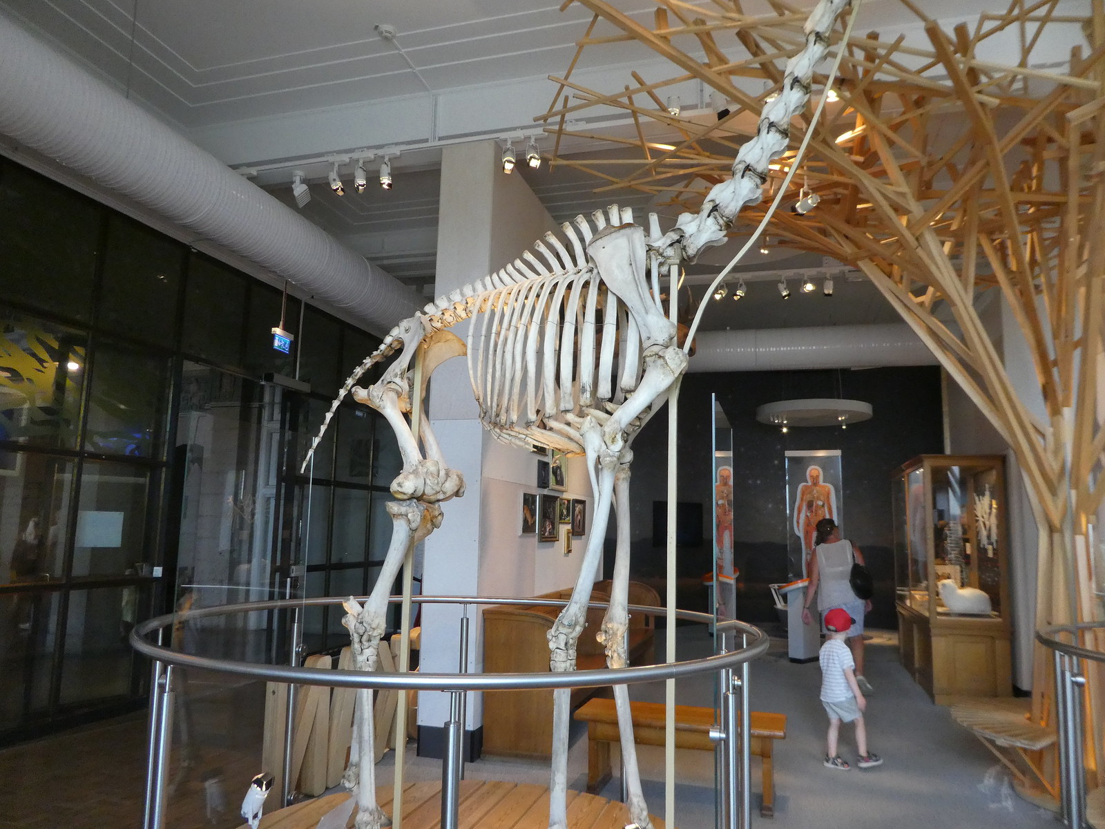 Swedish Museum of Natural History, Stockholm