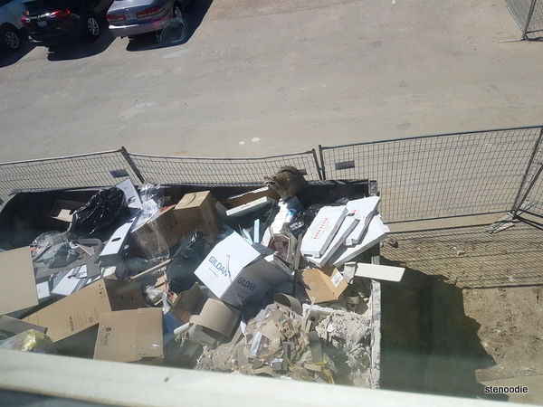 Raccoon in the trash